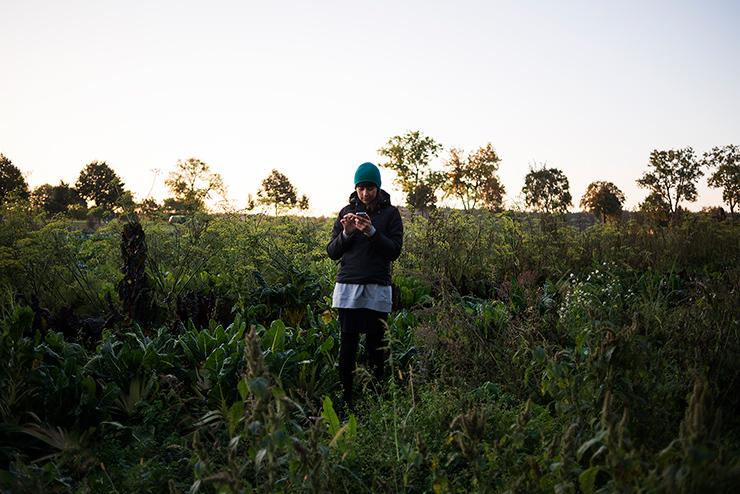 mh-blog-wild-garden-05