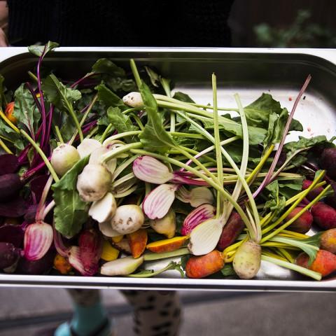 Restaurant Manager Blog Image