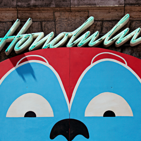 Honolulu Monkey